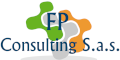 FP Consulting